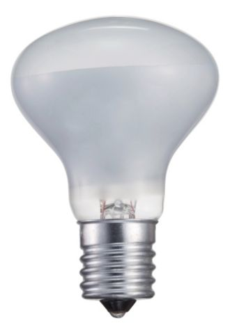 Philips  Indoor Spot Light 25W 046677415372