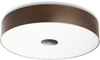 Philips Ecomoods Ceiling light 60 W 40340/11/86