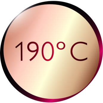 190°C top temperature for perfect styling results