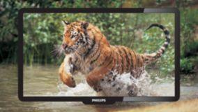 Pixel Precise HD