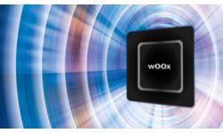Технология «wOOx»