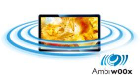 Ambi-wOOx, 20 W RMS