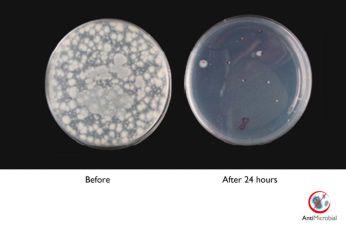 AntiMikrobiyal muhafaza aktif bir şekilde bakteri üremesini engeller