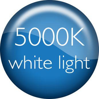 Лампы DiamondVision 5000К придают холодный белый свет вашему автомобилю