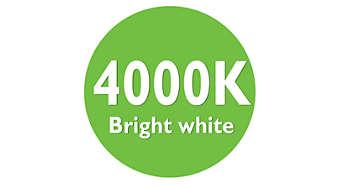 Luz blanca brillante de 4000K