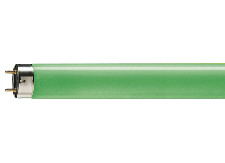 TL-D Colored 18W Green 1SL/25