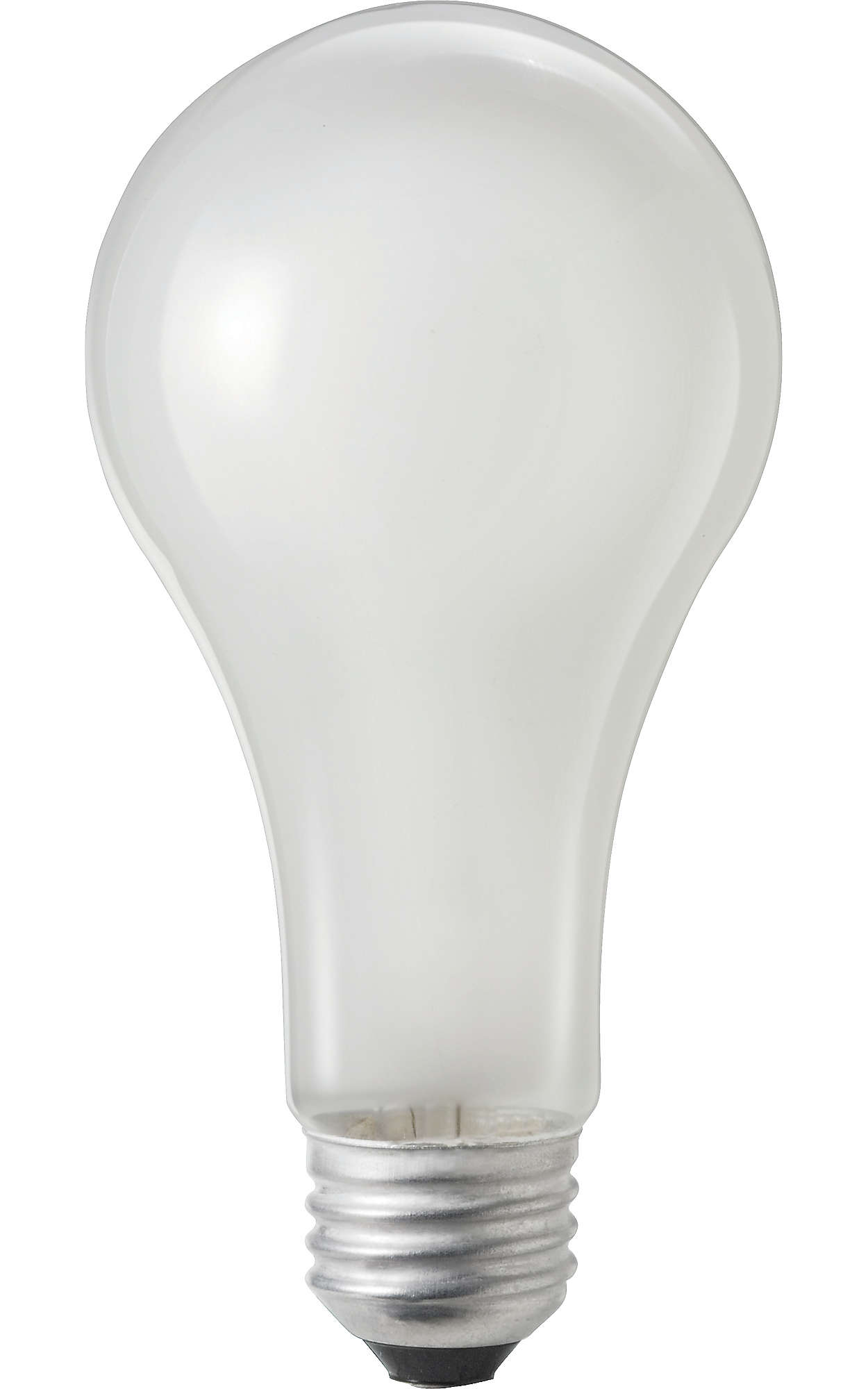 Rough Service Incandescent Lamps