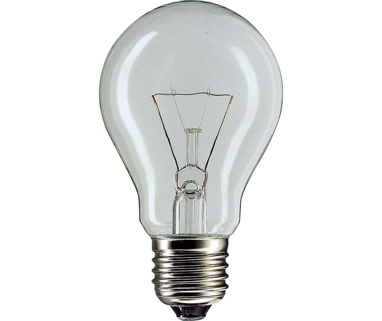 100w Light Bulb: Product Description,Lighting
