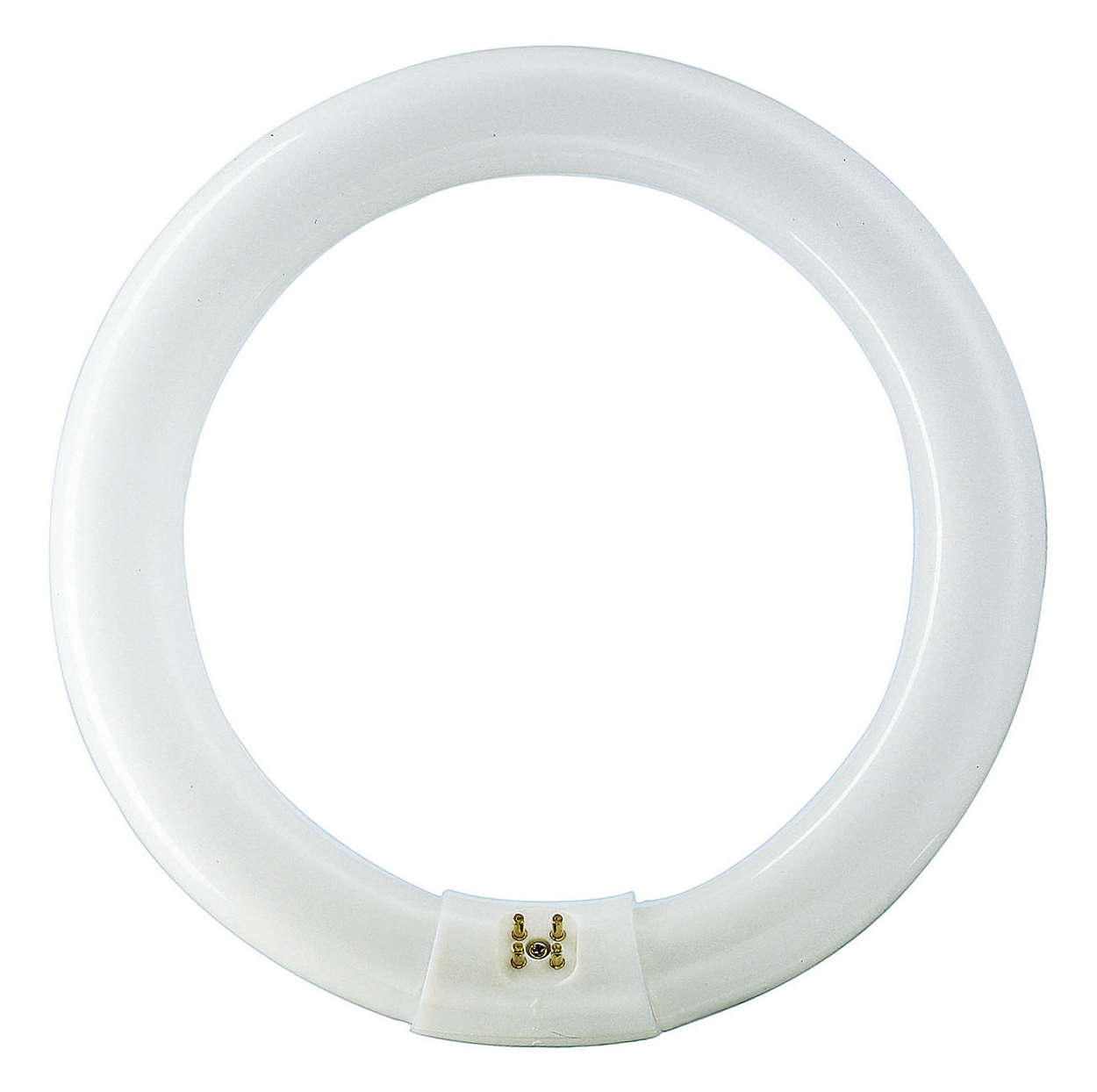 Circular shaped, basic fluorescent lighting