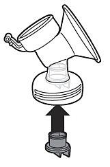 Insert the valve