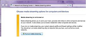 Media streaming option