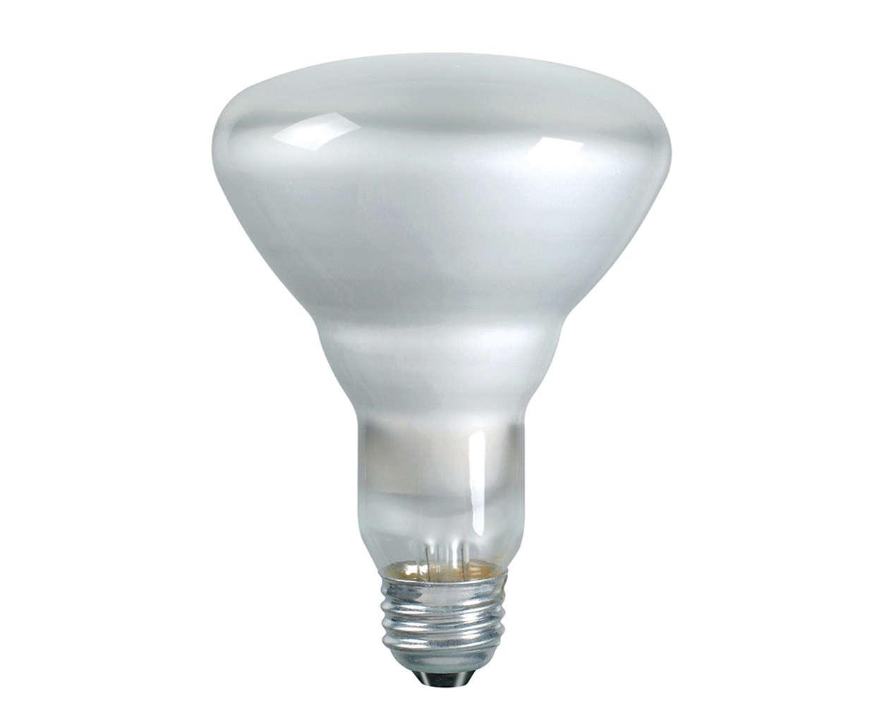 Duramax Indoor Flood Light 046677139278 Philips