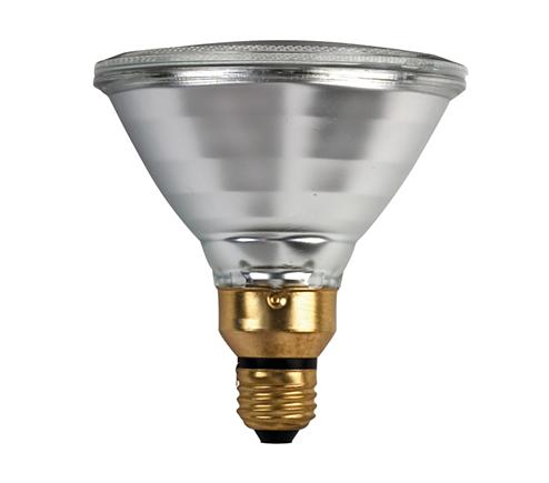 Indoor/Outdoor Flood Light 046677265830 | Philips