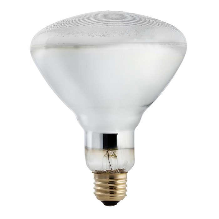Designed for bright indirect light