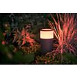 Podłącz i oświetl wybrane elementy na zewnątrz domu.