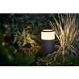 Collega e illumina il tuo giardino