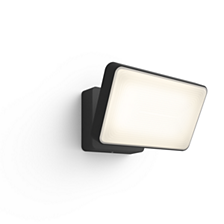 Hue White and color ambiance Discover Outdoor Floodlight