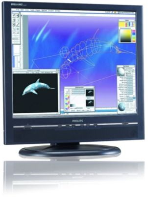 Philips 190P5EB/27 Monitor 64 BIT Driver