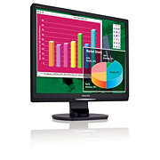 Brilliance LCD monitor with Audio