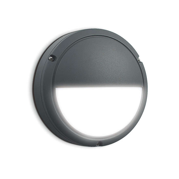 LED Wall Mount