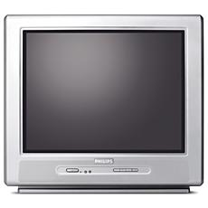 21PT5401/01 -    Stereo TV