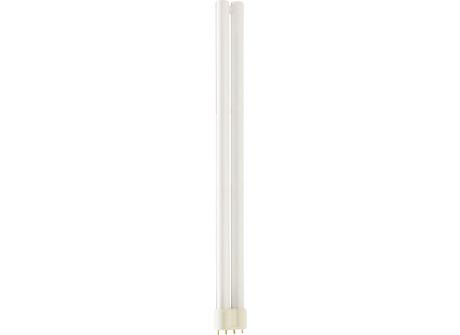 MASTER PL-L 36W/840/4P UNP/50