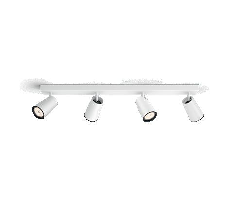 50574/31/PN