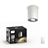 Hue White ambiance Pillar single spotlight