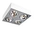 Lirio Spot light