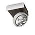 Lirio Spotlampe