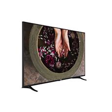 65HFL2879T/12  Professionele TV
