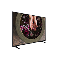 65HFL2879T/12  TV profissional