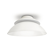 Hue White and color ambiance Beyond ceiling light