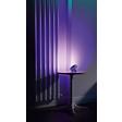 Colorea tu mundo con luz