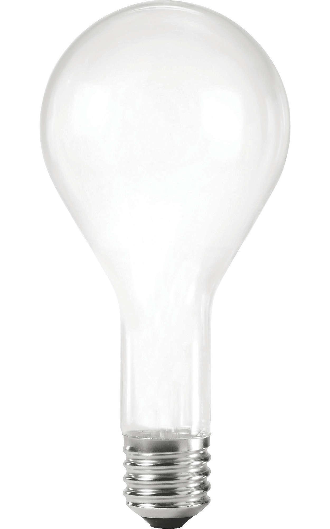 Rough Service Incandescent Lamps