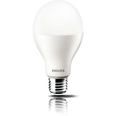 LED Foco
