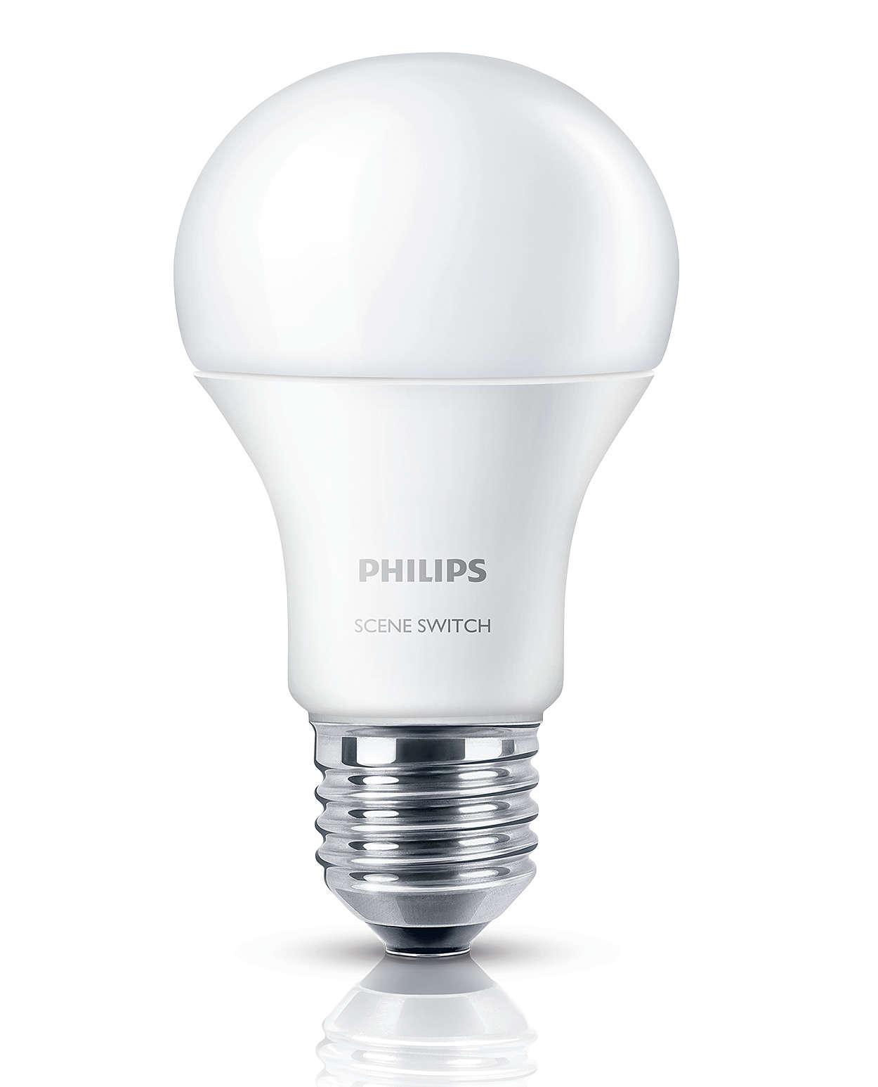 One bulb three light settings