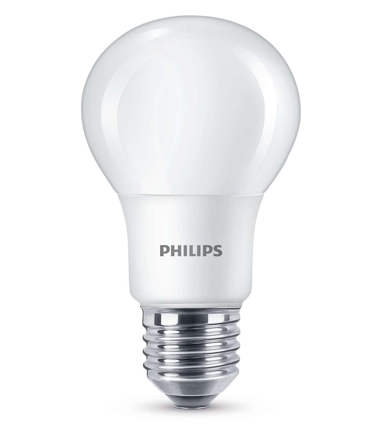 A luz certa cria o ambiente