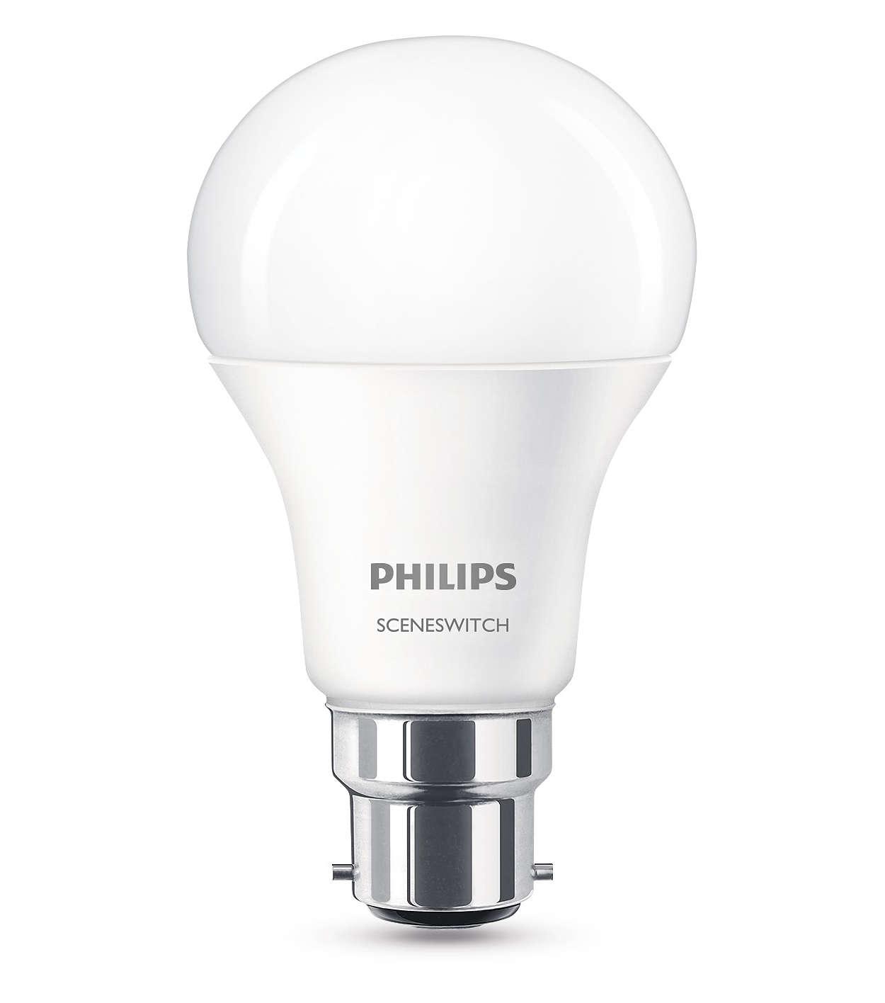 Viena lemputė ir trys šviesos nustatymai