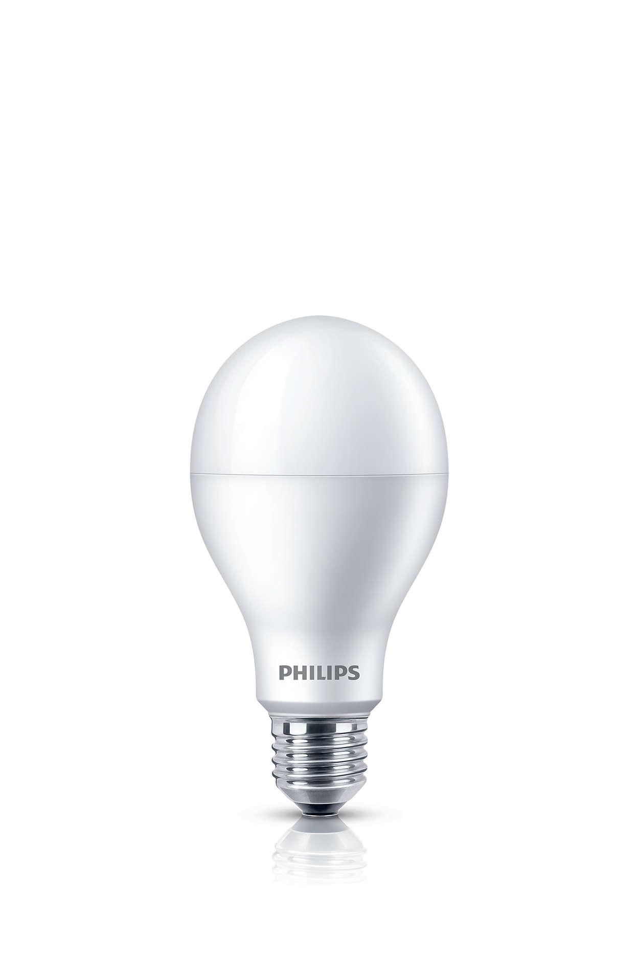 Bóng đèn không giống như bất kỳ loại bóng đèn nào khác