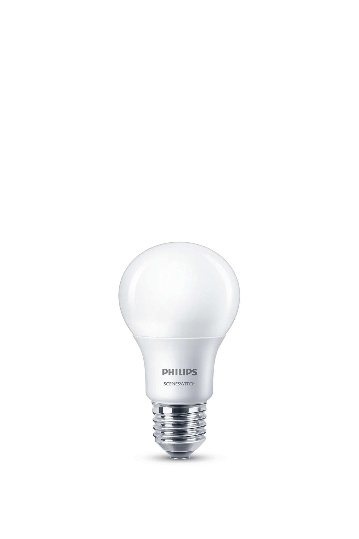 Bir lamba. Anahtarınız. Üç ışık ayarı.