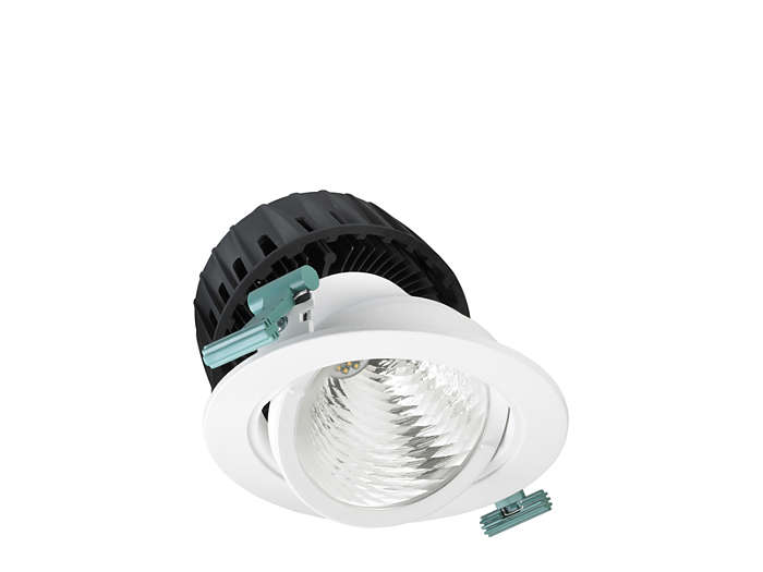 LuxSpace Accent Fresh Food adjustable downlight, performance version