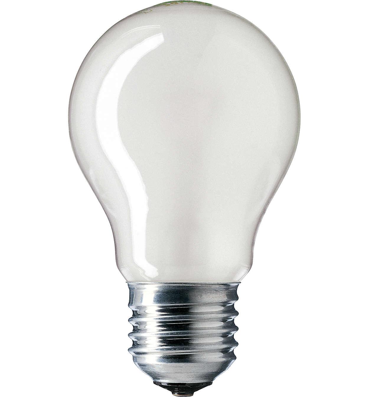 Lamp: