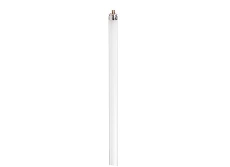F8T5 Cool White Plus 12