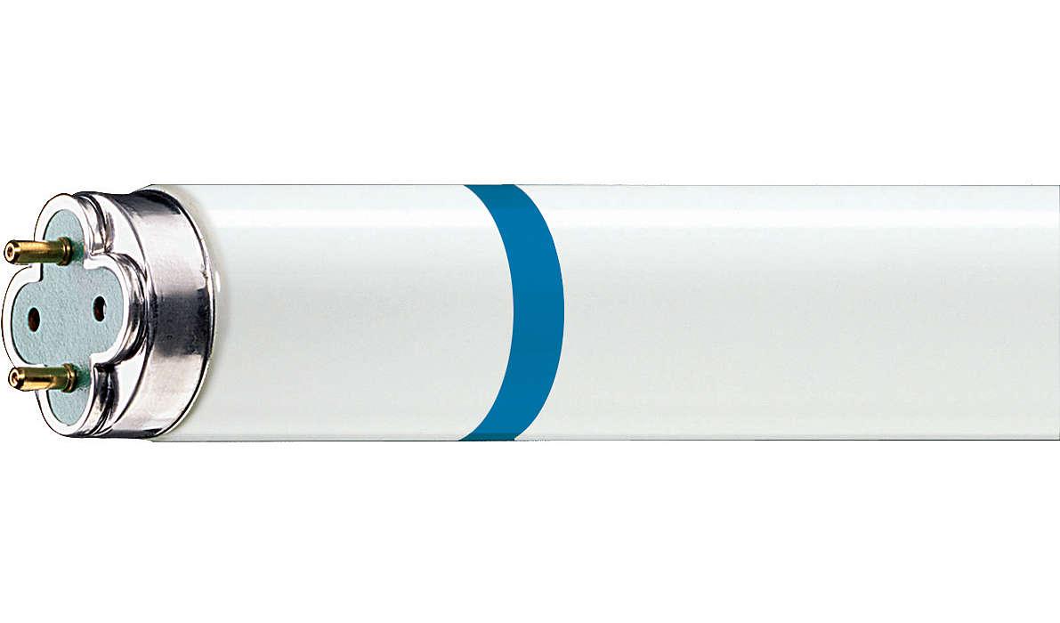 Longue durée de vie, éclairage fluorescent protégé contre les bris de verre