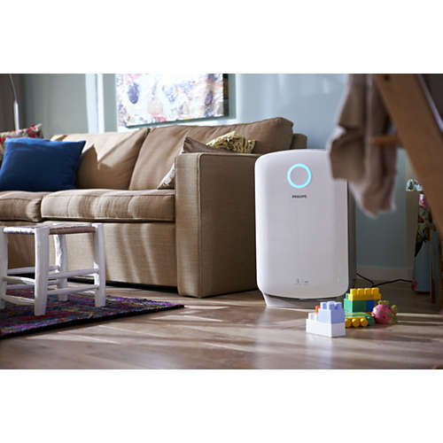Combi air purifier and humidifier