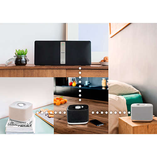 multiroom, Wireless Music System