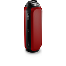 BT6600R/12 -    draadloze draagbare luidspreker