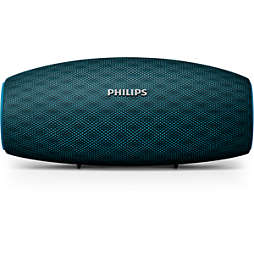 EverPlay alto-falante wireless portátil