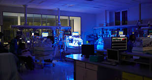 Mangiagalli system provides individual lighting for incubators